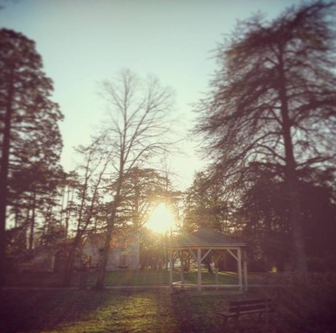 sunset in a parc – nature beauty